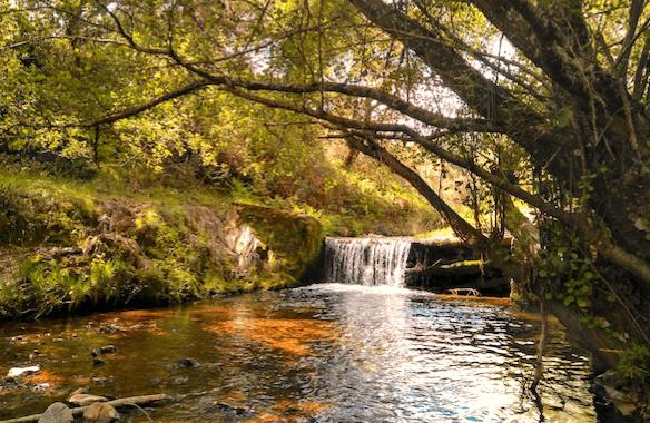 Senderos Sierra de Huelva