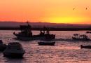 excursiones en Barco Huelva