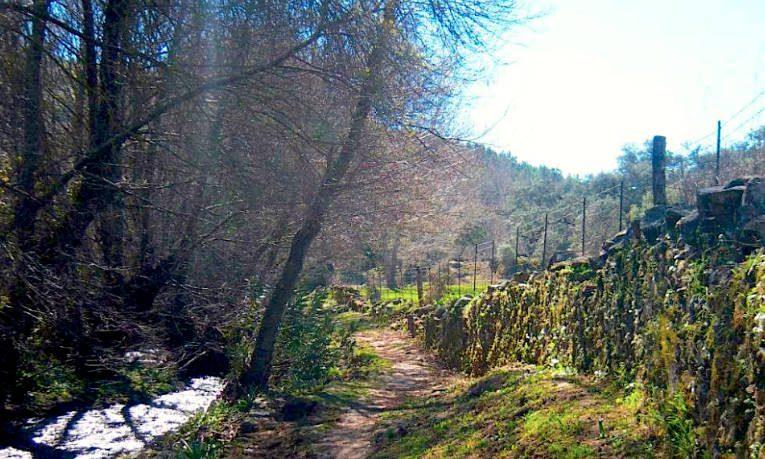 planes para celebrar el día del turismo Ruta senderismo Sierra Aracena