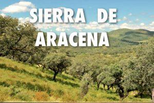 Visitar la Sierra de Aracena y Picos de Aroche en Huelva