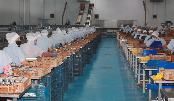 Visita a la Fabrica de USISA