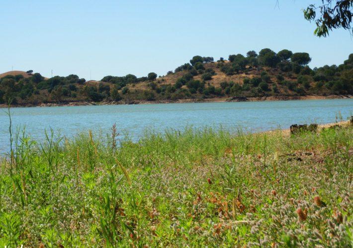 10 ermitas del Condado de Huelva que te sorprenderán